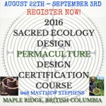 permaculture design certification